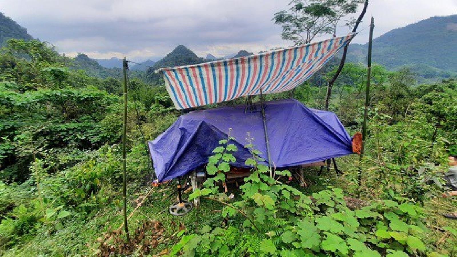 """Học trò người Mông ở Yên Bái lên núi """"hứng"""" sóng 3G học trực tuyến"""