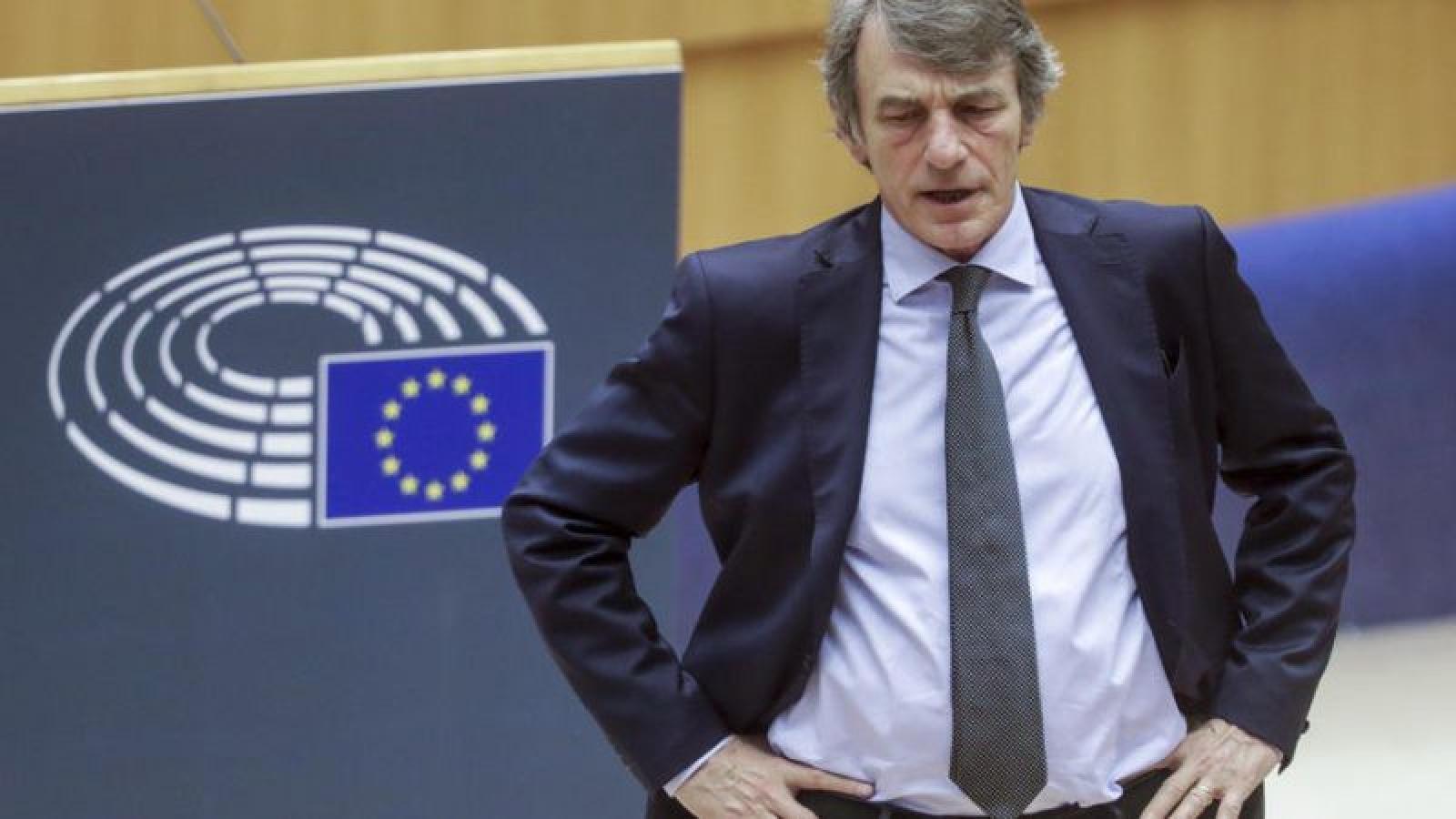 EP ra nghị quyết phê phán cách đối phó dịch bệnh của 2 nước thành viên Thể hiện