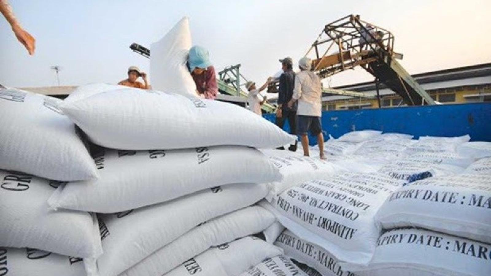 Nguyên Viện trưởng VEPR: Điều hành xuất khẩu gạo là quá vội vã