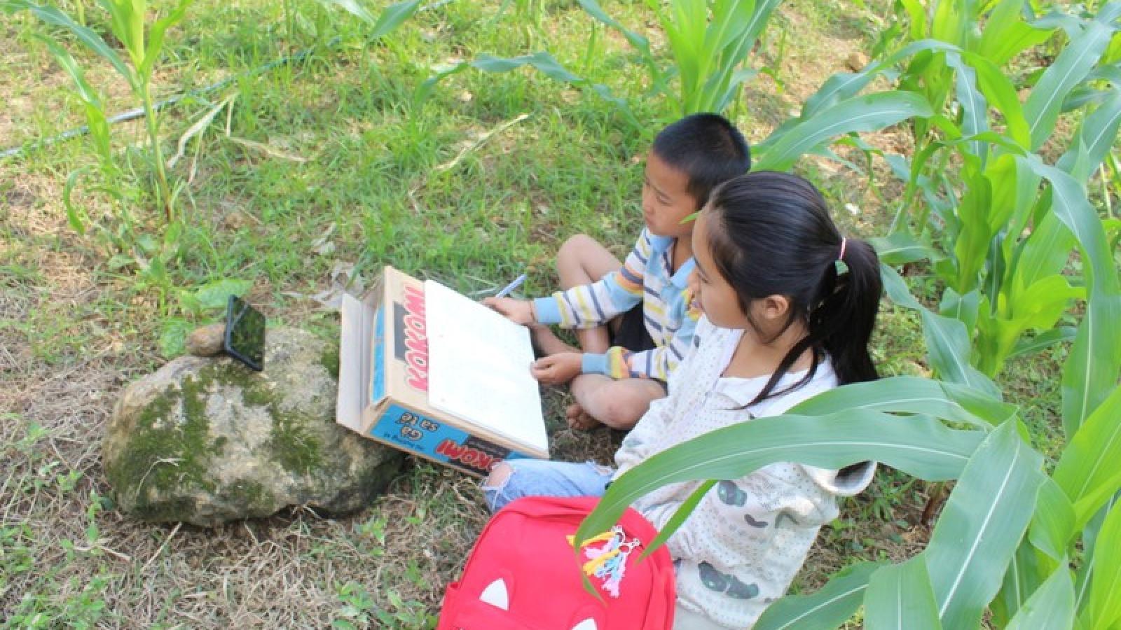"""""""Đáng nể"""" với tỷ lệ học trực tuyến ở một trường tiểu học vùng khó Lào Cai"""