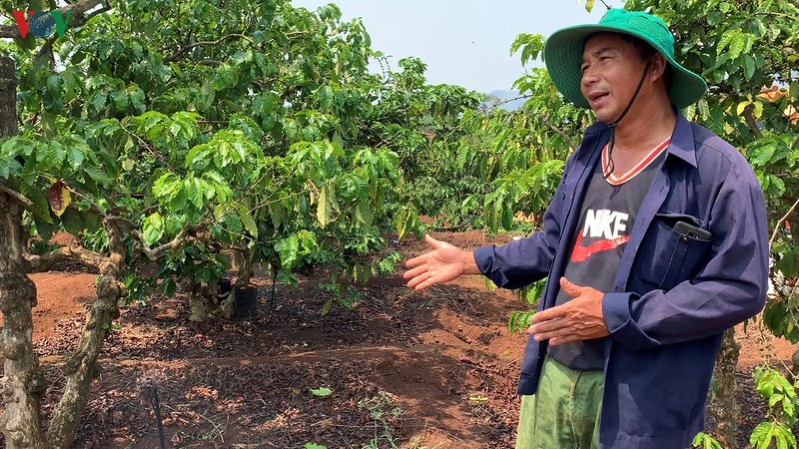 Giải bài toán ứng phó khô hạn cho 2 triệu ha cây trồng ở Tây Nguyên