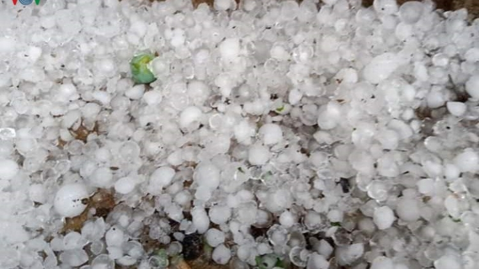 Cảnh báo mưa đá, dông lốc tại Sơn La