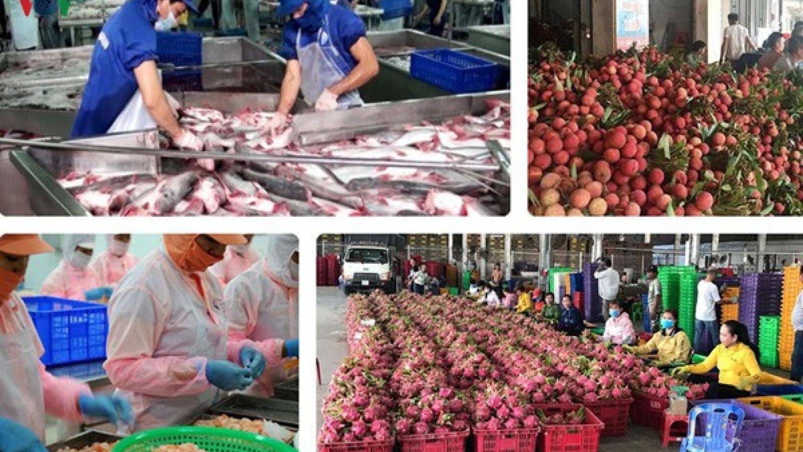 Phụ nữ Hà Nội kết nối tiêu thụ nông sản an toàn trong mùa dịch