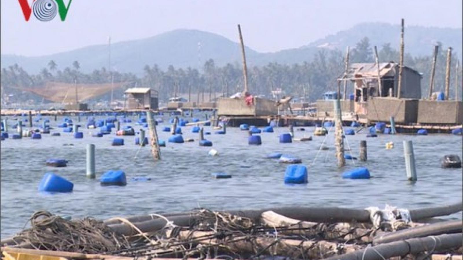 """Tắc đầu ra ngành thủy sản do """"bão"""" dịch, ngư dân lao đao"""