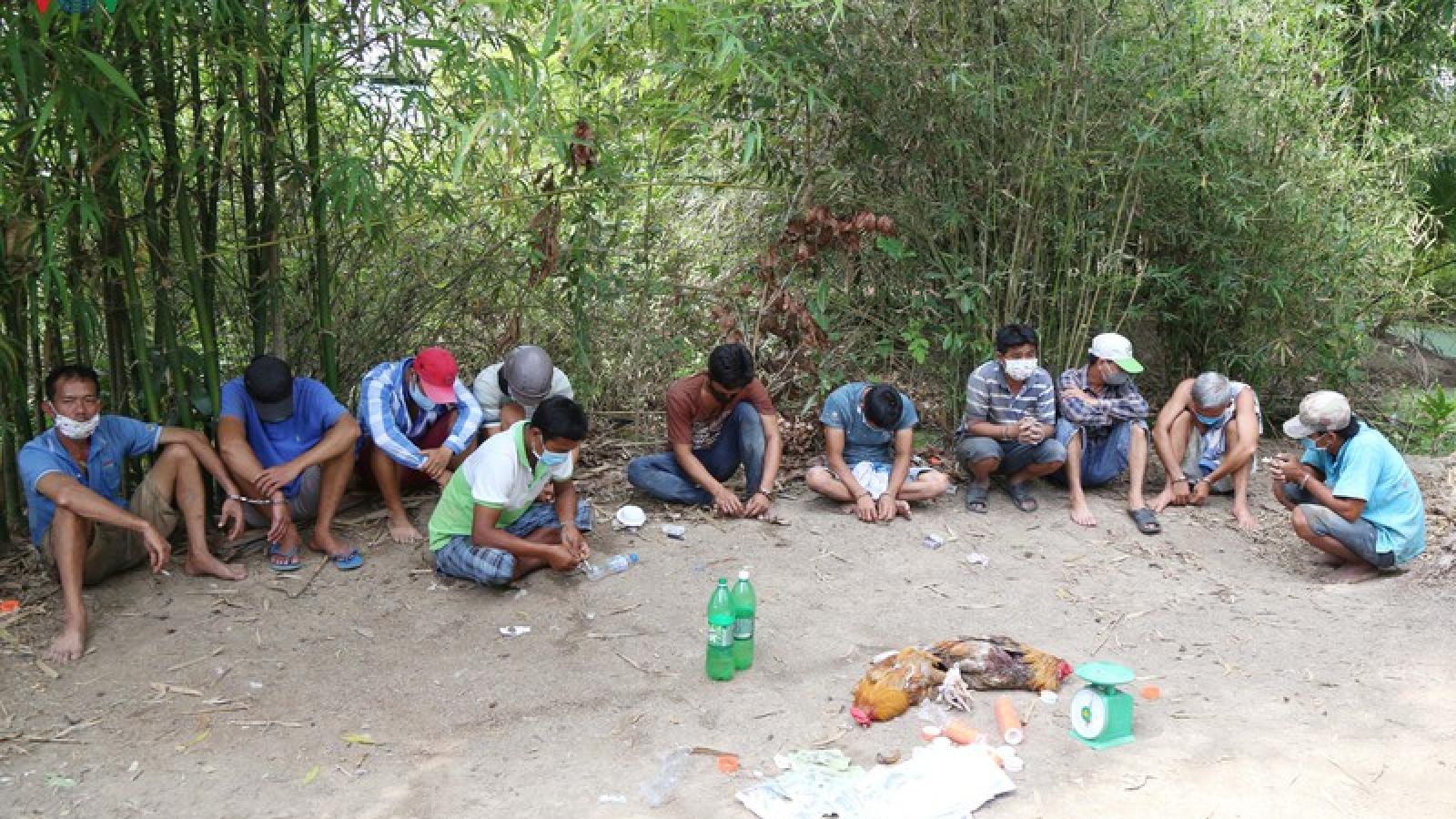Triệt phá 1 tụ điểm đá gà ăn tiền tại Sóc Trăng