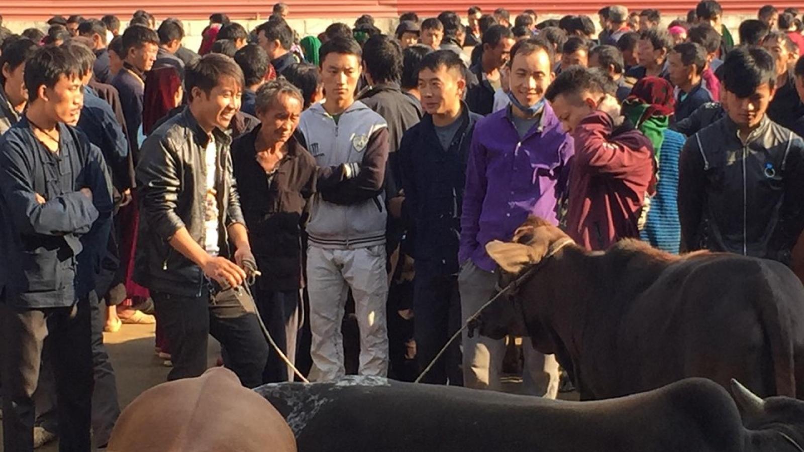 Những điều tuyệt vời ở chợ phiên vùng cao Mèo Vạc