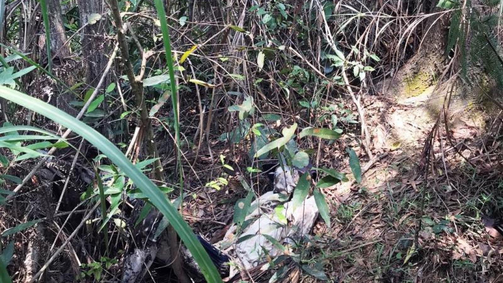 Phát hiện bộ xương người trên núi ở Đà Nẵng