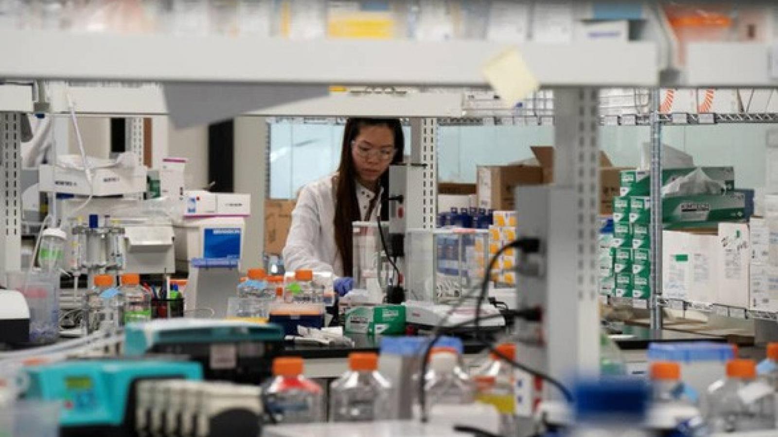 Na Uy đóng góp 1 tỷ USD cho quỹ nghiên cứu vaccine phòng dịch Covid-19
