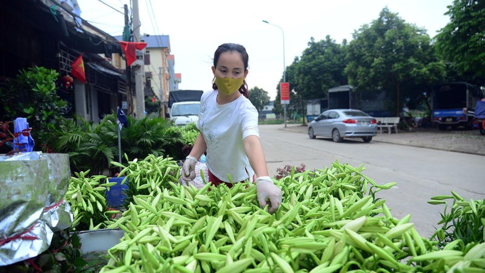 Người dân thôn Hạ Lôi gom hoa màu, chờ thời khắc dỡ bỏ cách ly