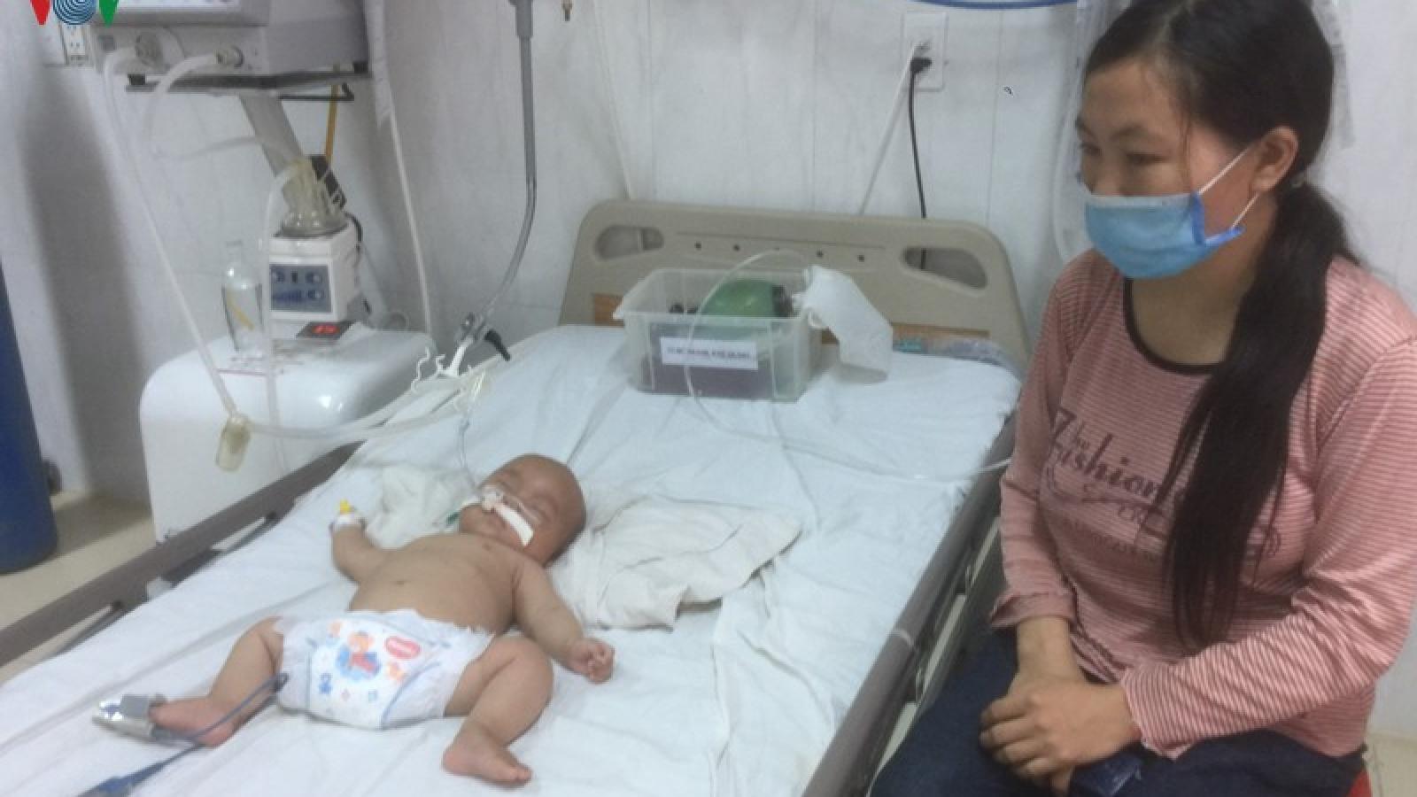 Phát hiện 2 cháu bé ở Đắk Lắk bị viêm não Nhật Bản
