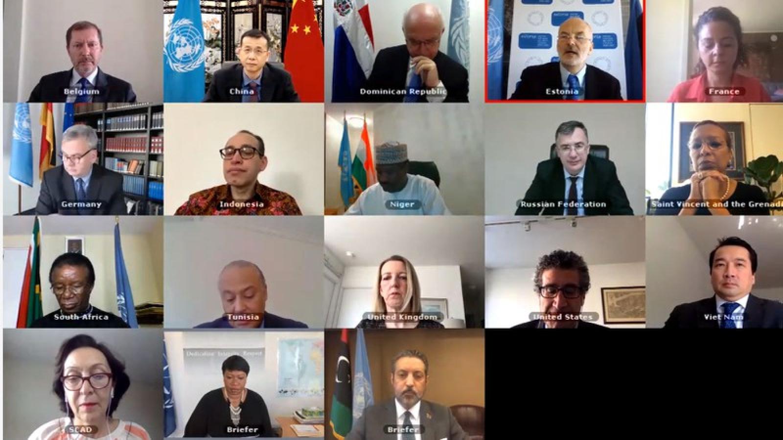 Hội đồng Bảo an LHQ quan ngại về tình hình chiến sự gia tăng ở Libya