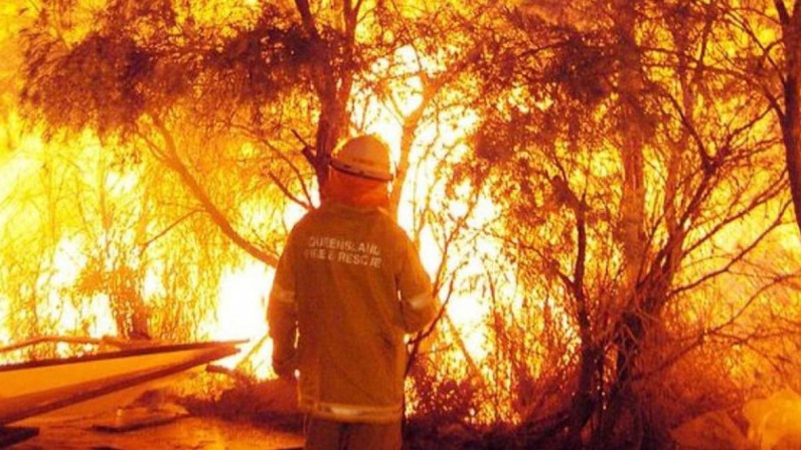 Australia chi hơn 2 tỉ AUD phục hồi thảm họa cháy rừng