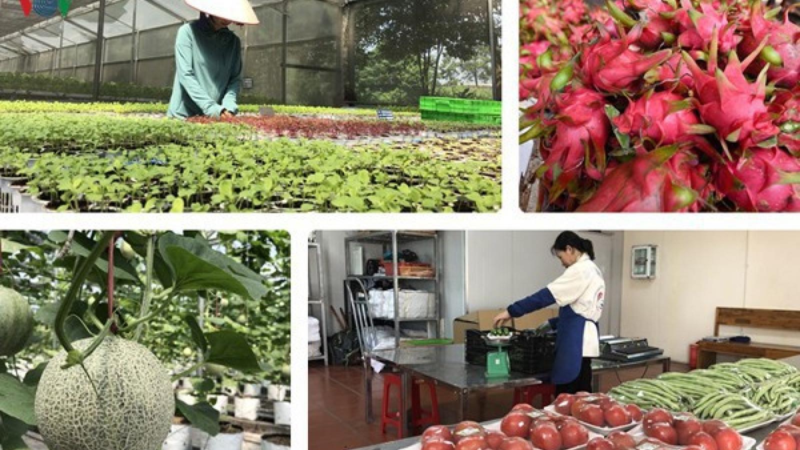 Cơ hội xuất khẩu nông sản và thiết bị y tế phòng dịch sang Australia