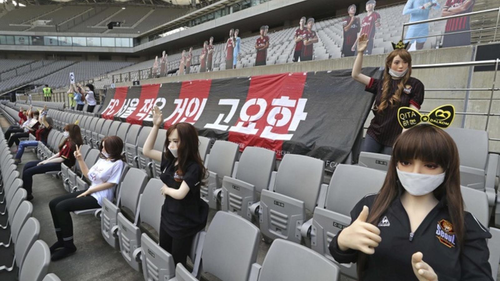 CLB Hàn Quốc bị phạt nặng vì sử dụng búp bê tình dục trên SVĐ