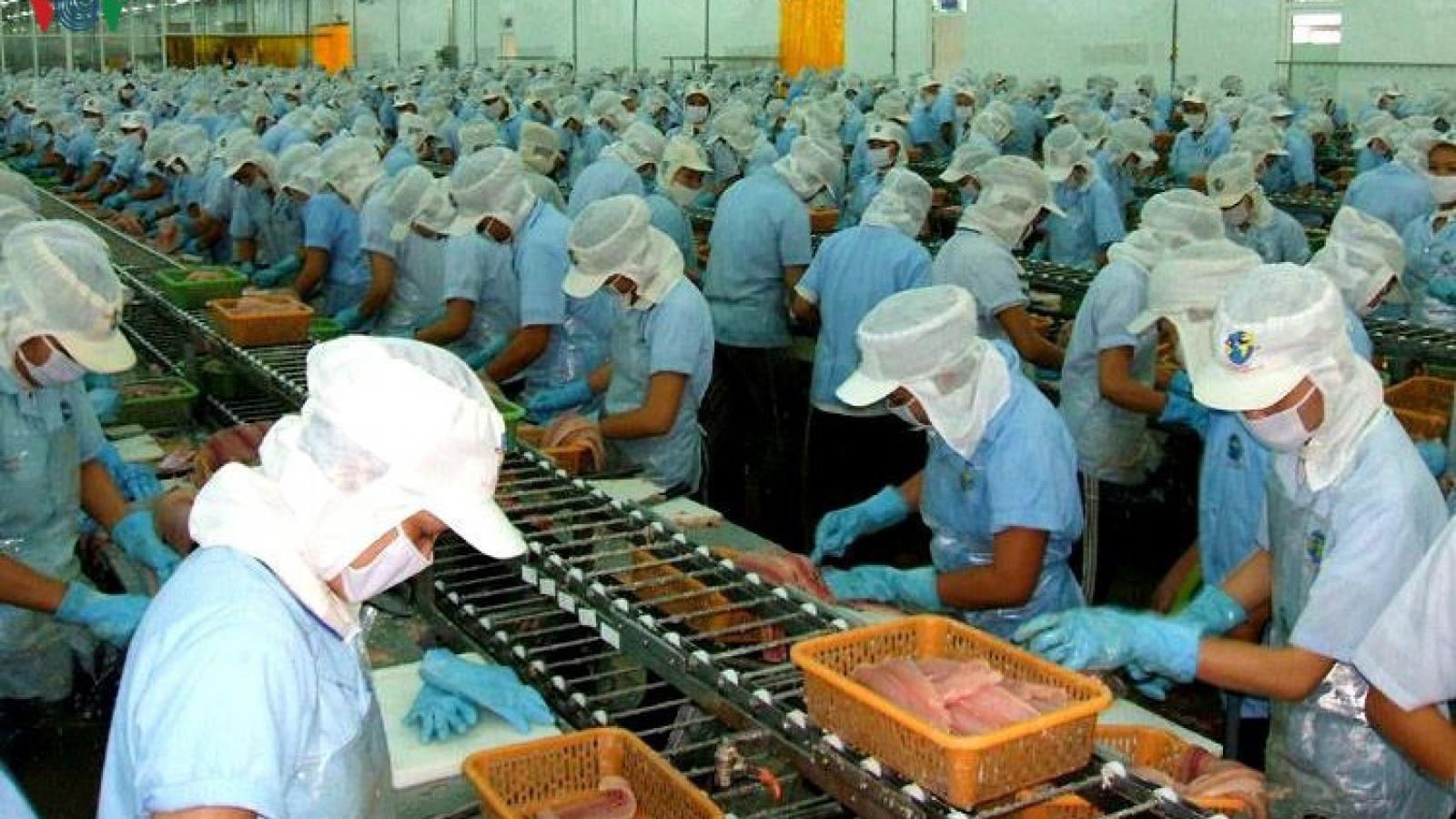 """Tôm Việt Nam có thêm cơ hội xuất khẩu khi đại dịch """"dịu"""" đi"""