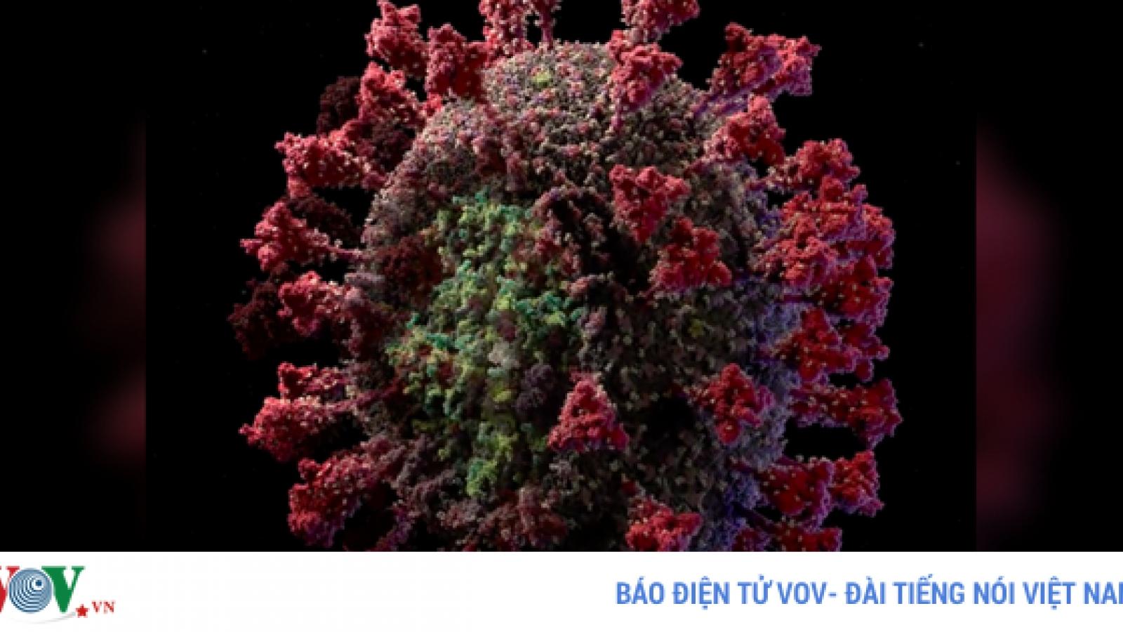 Video: Cận cảnh ở cấp độ nguyên tử SARS-CoV-2, chi tiết đến khó tin
