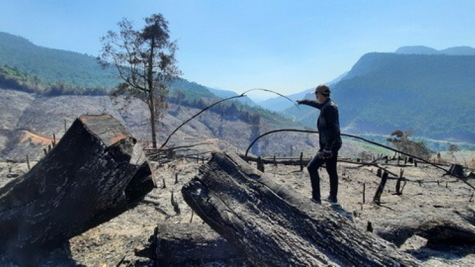 Vụ cháy hơn 32 ha rừng ở Quảng Nam có liên quan đến Giám đốc BQL rừng