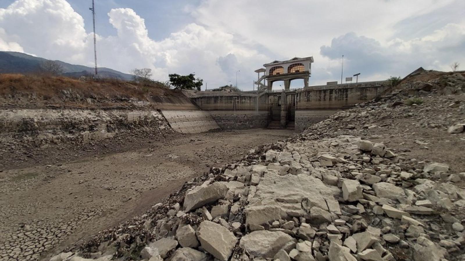 Khoảng 72.000 người dân Ninh Thuận có nguy cơ thiếu đói do hạn hán