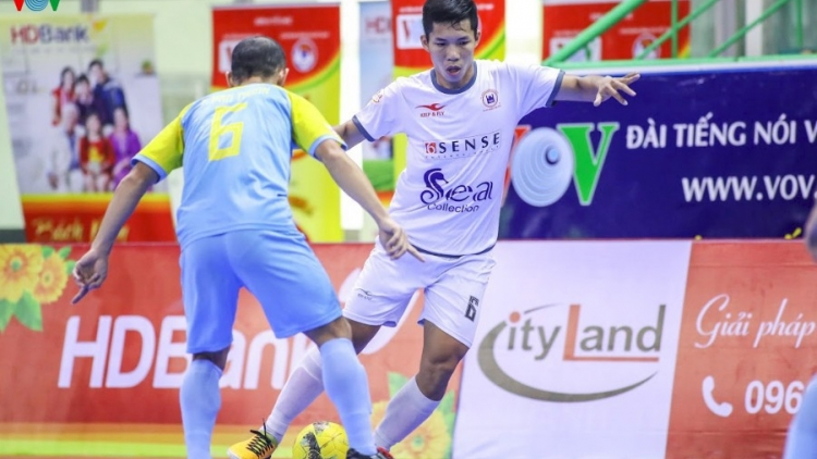 Xem trực tiếp Futsal HDBank VĐQG 2020: Cao Bằng - Tân Hiệp Hưng