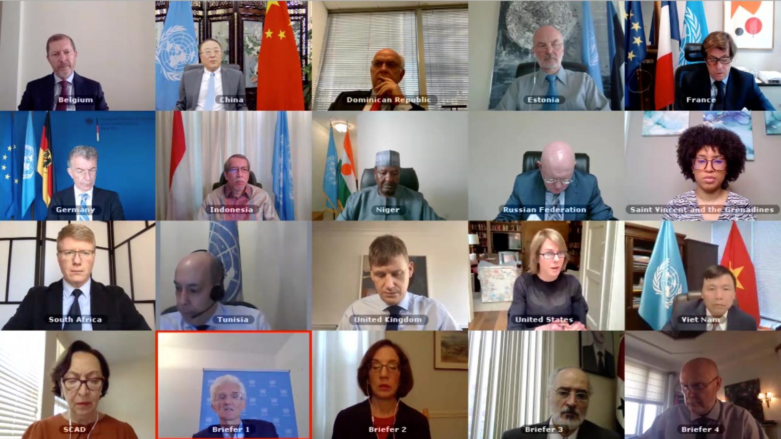 Hội đồng Bảo an Liên Hợp Quốc thảo luận về tình hình nhân đạo ở Syria
