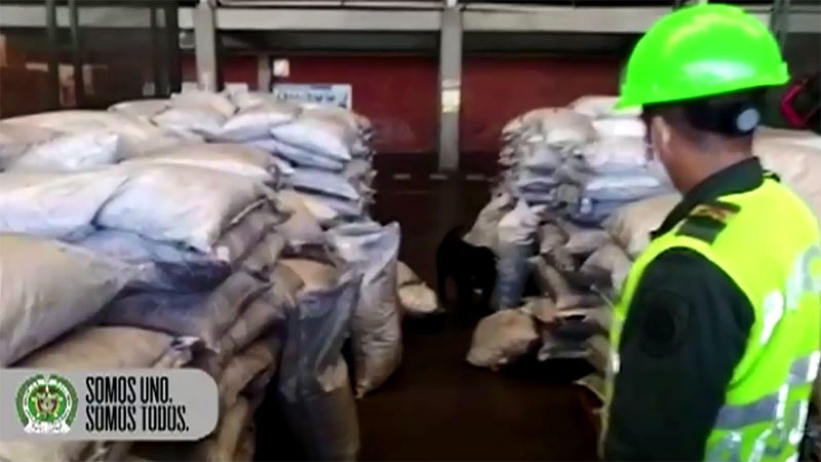 Cảnh sát Colombia bắt giữ lượng lớn Cocain trị giá 265 triệu USD