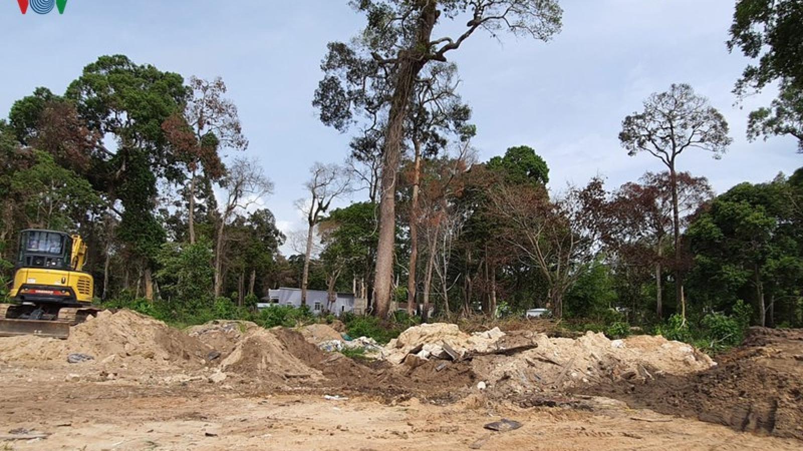 """Đất rừng Phú Quốc """"bốc hơi"""", Chủ tịch tỉnh Kiên Giang """"giật mình"""""""