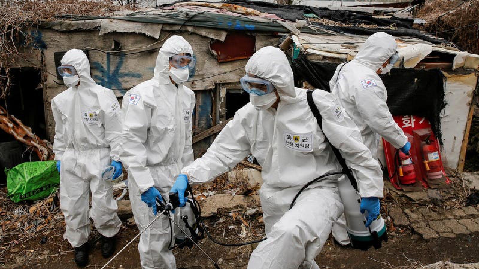 WHO sẽ cử chuyên gia tới Trung Quốc tìm hiểu nguồn gốc SARS-CoV-2