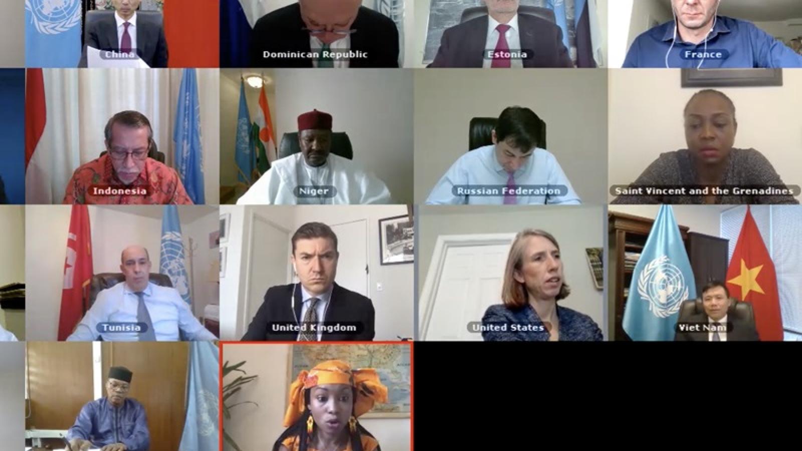 HĐBA thảo luận hoạt động của Văn phòng LHQ tại vùng Tây Phi và Sahel
