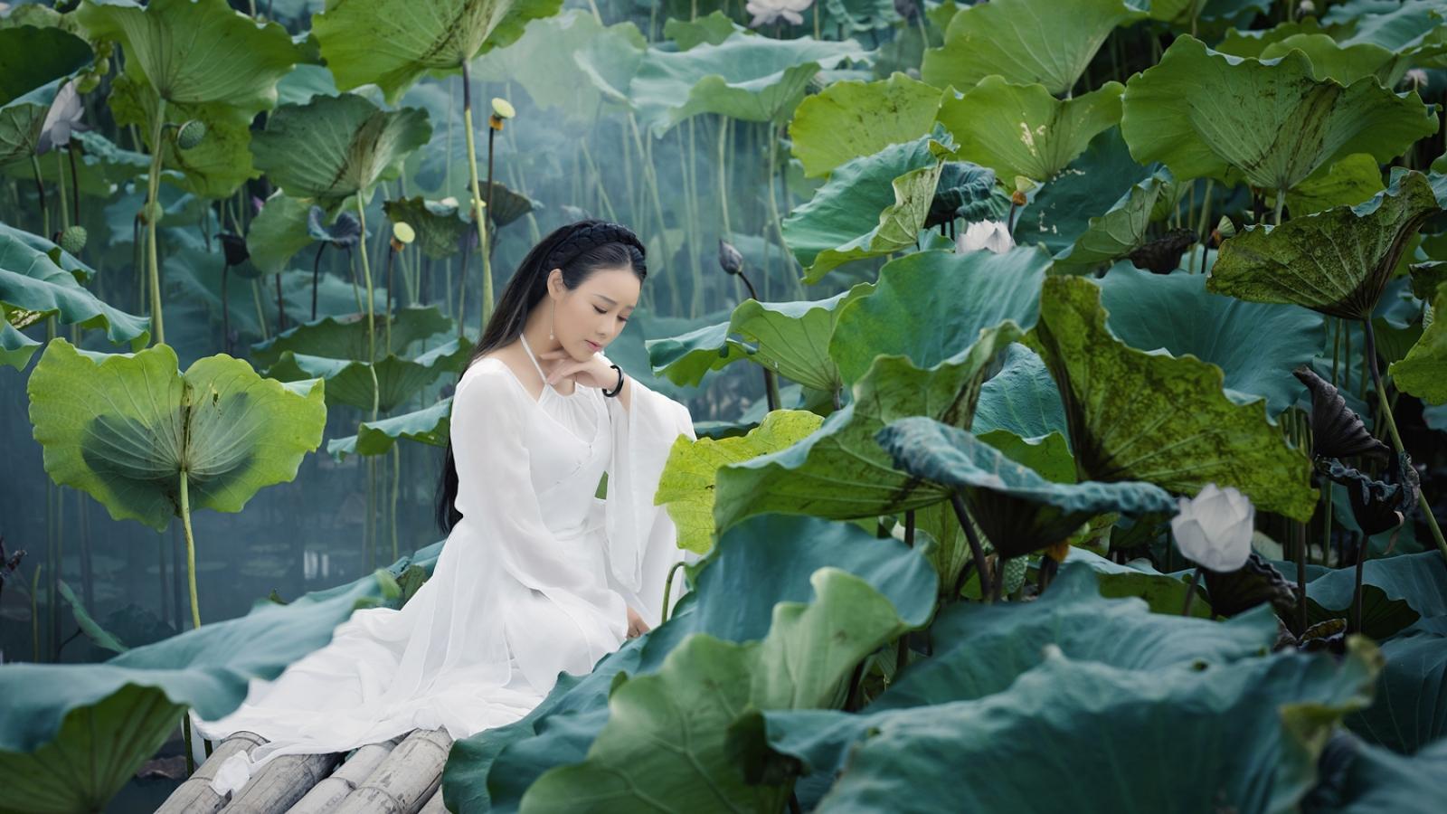 """Hoa Trần hoá """"tiên nữ vườn sen"""" trong bản hit của Hoài Lâm"""