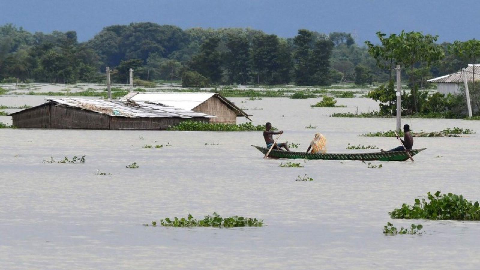 Lũ lụt ở Ấn Độ làm 110 người thiệt mạng, 5,4 triệu người bị ảnh hưởng