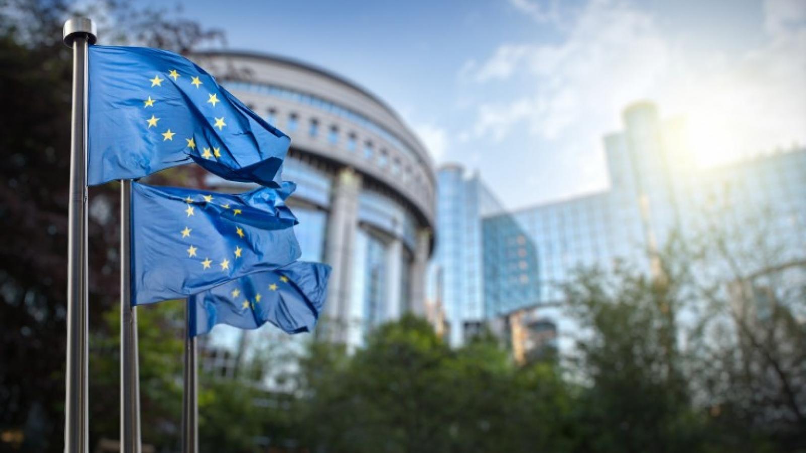Các nước Đông Âu đánh giá cao kết quả của Hội nghị Thượng đỉnh EU