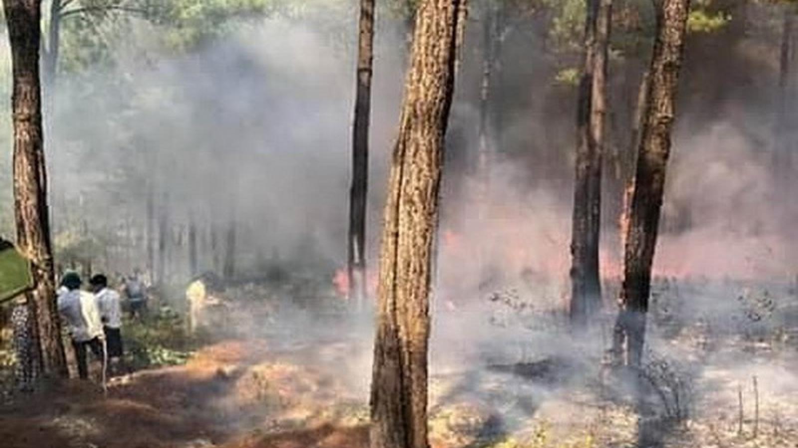 Quảng Bình liên tiếp xảy ra các vụ cháy rừng trong 1 ngày 