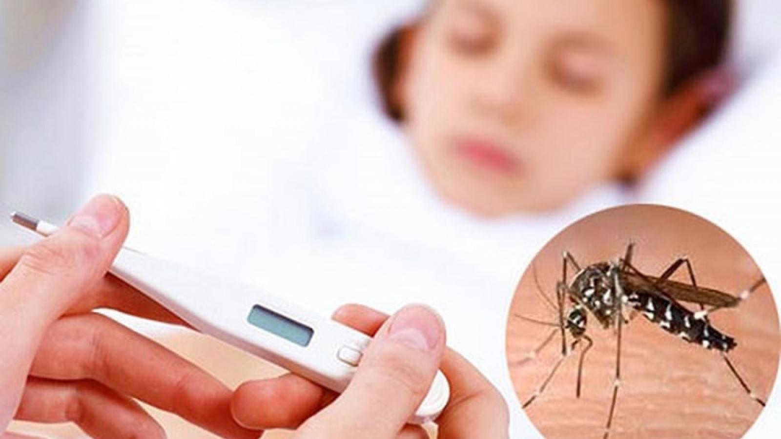 Lào tập trung nguồn lực ngăn chặn bệnh sốt xuất huyết