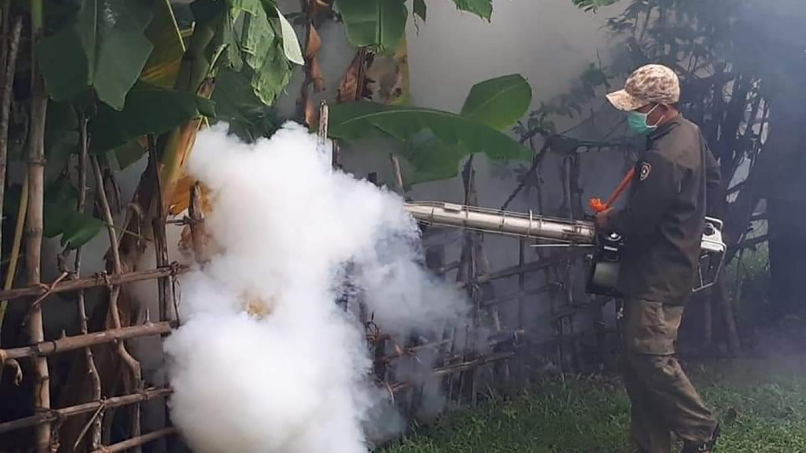 Lào: 8 người chết vì sốt xuất huyết