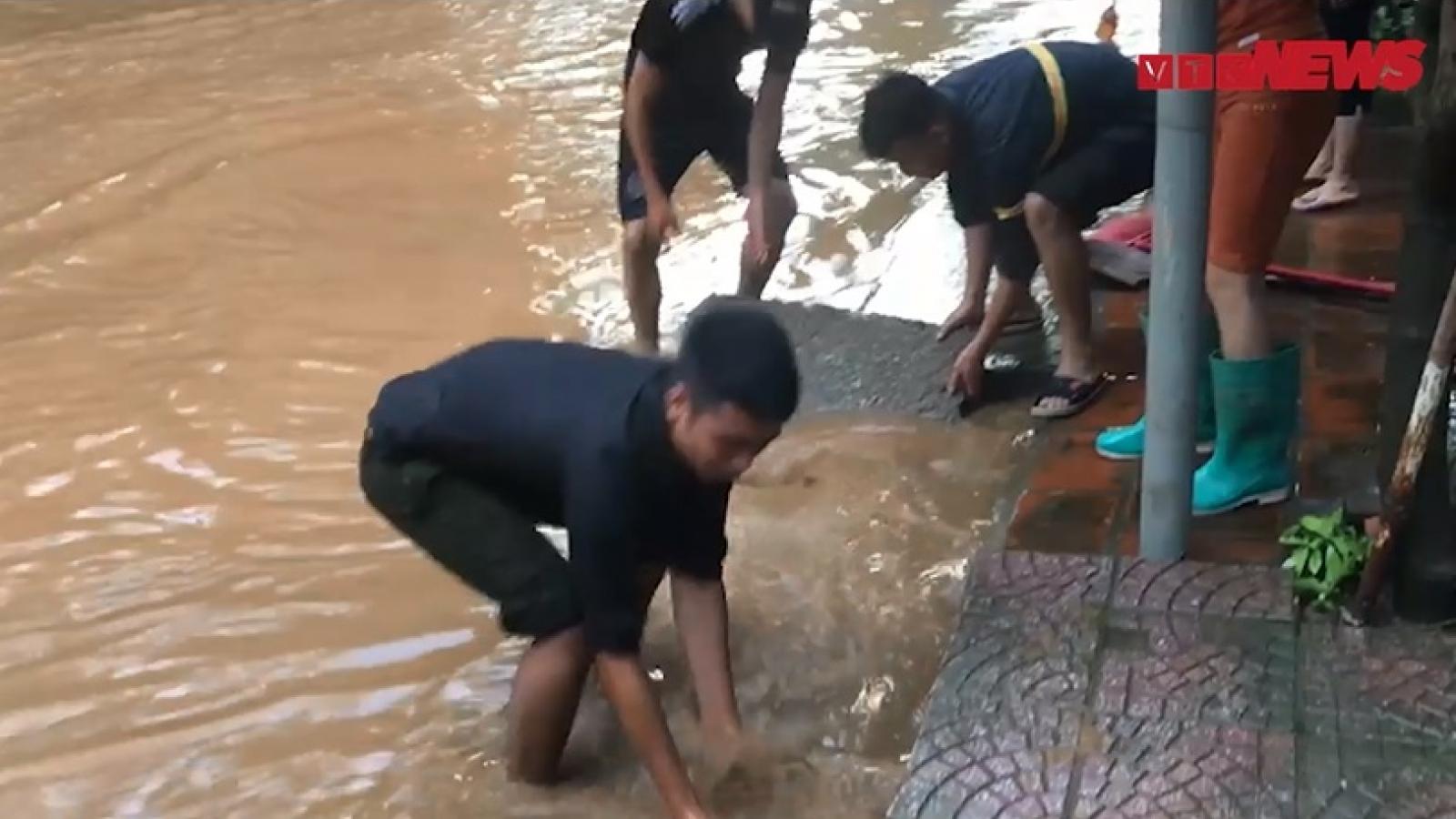 Video: Nước rút, người dân TP Hà Giang đua nhau bắt cá