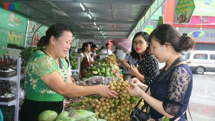 Son La exports 30 tonnes of locally-grown longans to China