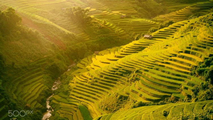 Mu Cang Chai appears picturesque through lens of foreign photographers