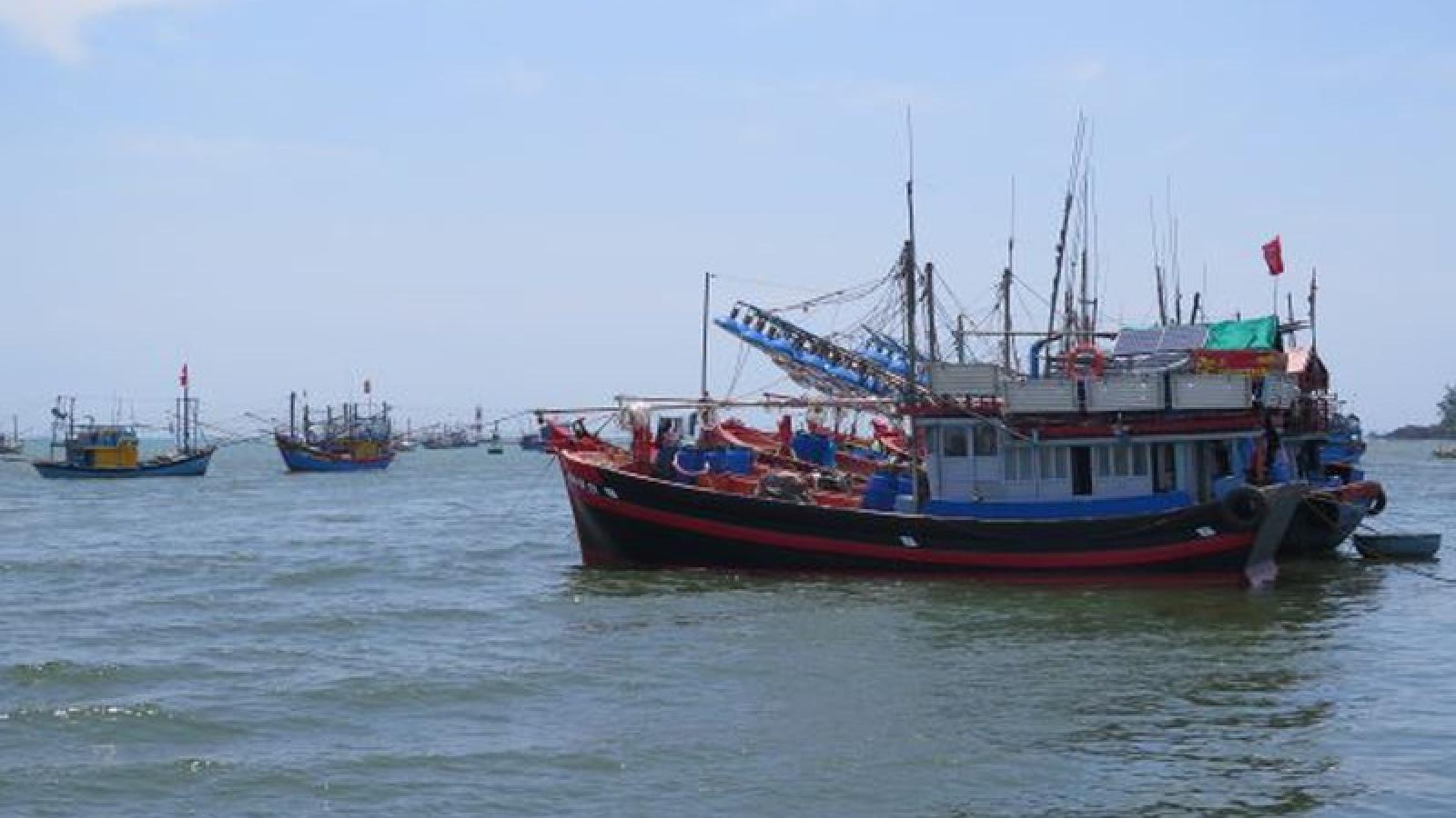 Hơn 2.000 tàu cá ở Quảng Ngãi không đăng ký, đăng kiểm