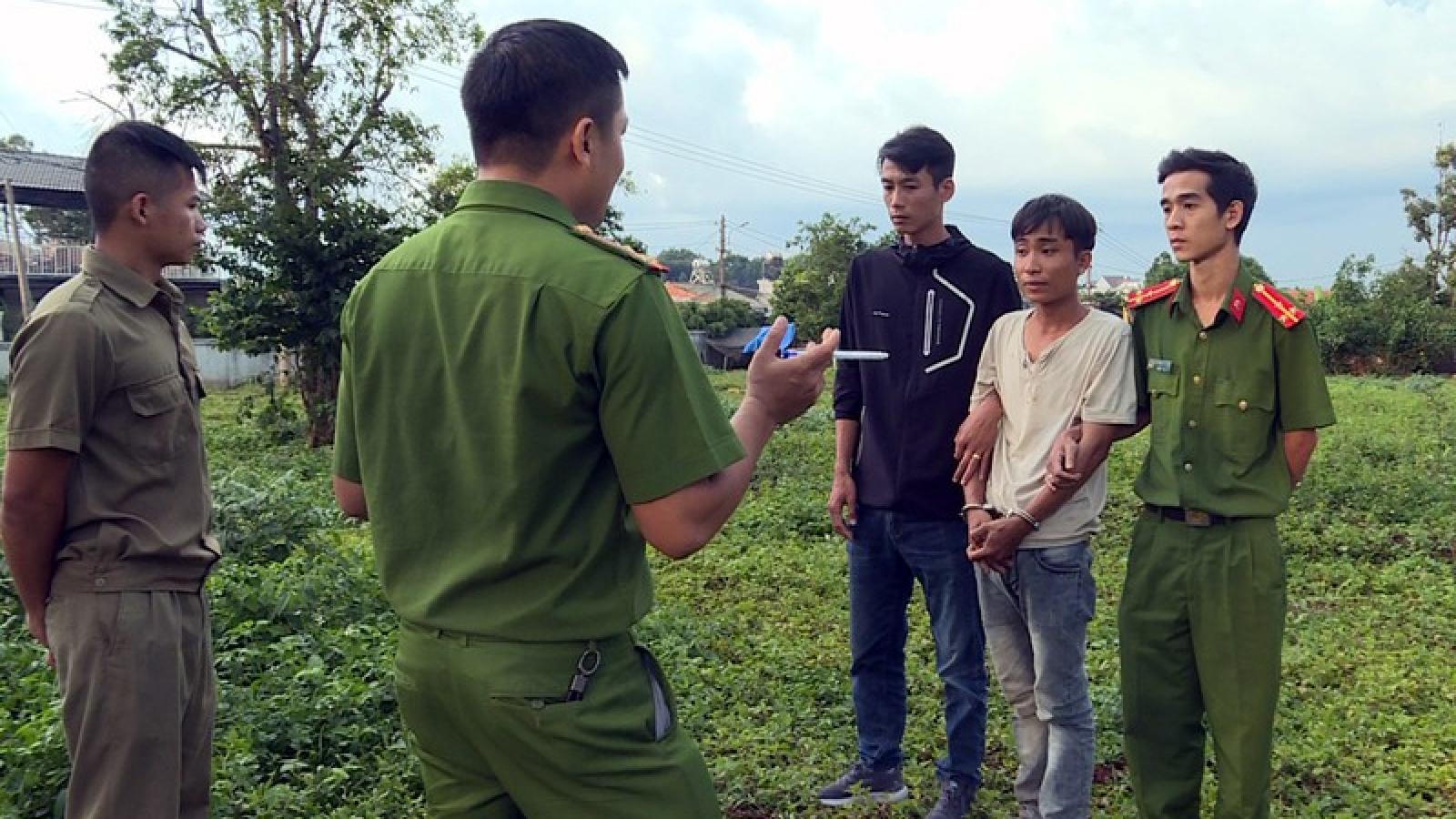 Trộm cặp bò giống ở Khánh Hòa mang lên Đắk Lắk tiêu thụ