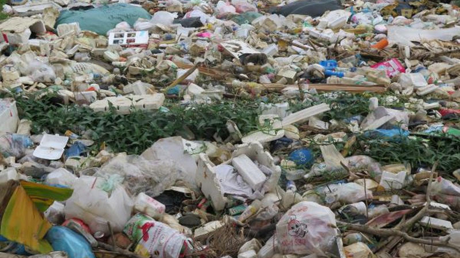 Chuyện rác thải ở Quảng Ngãi và lời hứa với dân