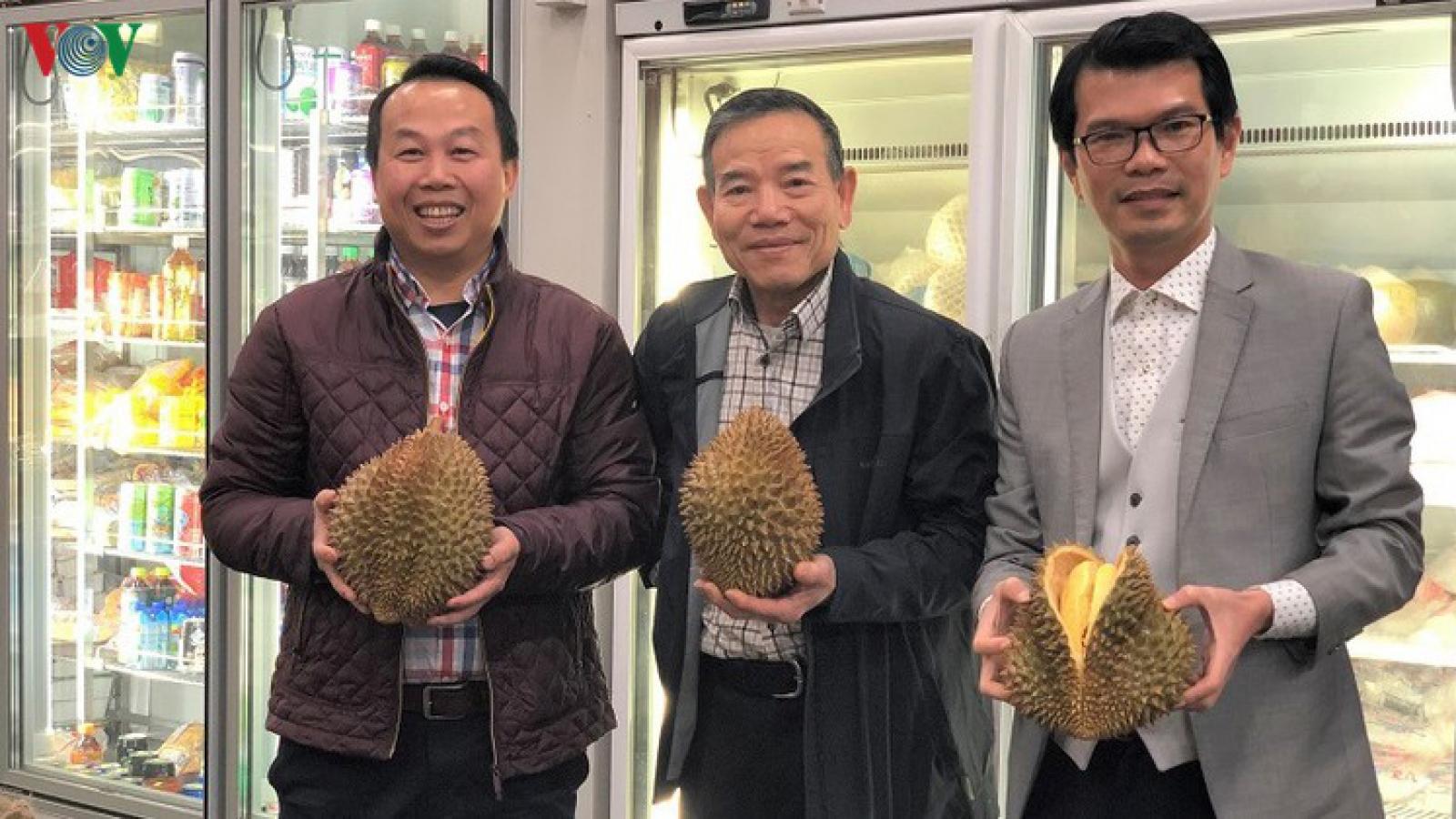 Australia: Thị trường đầy hứa hẹn của sầu riêng Việt Nam