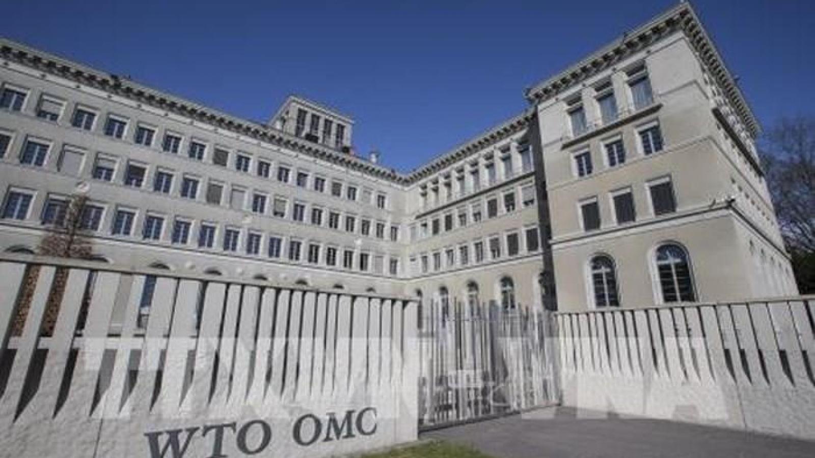 Cuộc đua vị trí Tổng giám đốc WTO chính thức bắt đầu