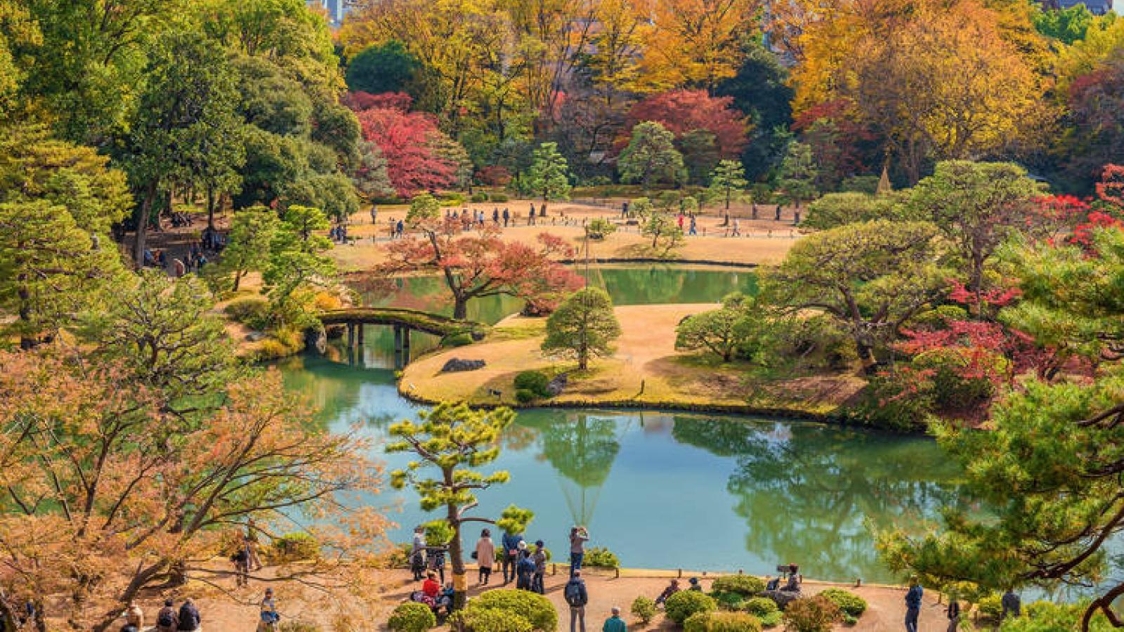 Những công viên đẹp nhất thủ đô Tokyo