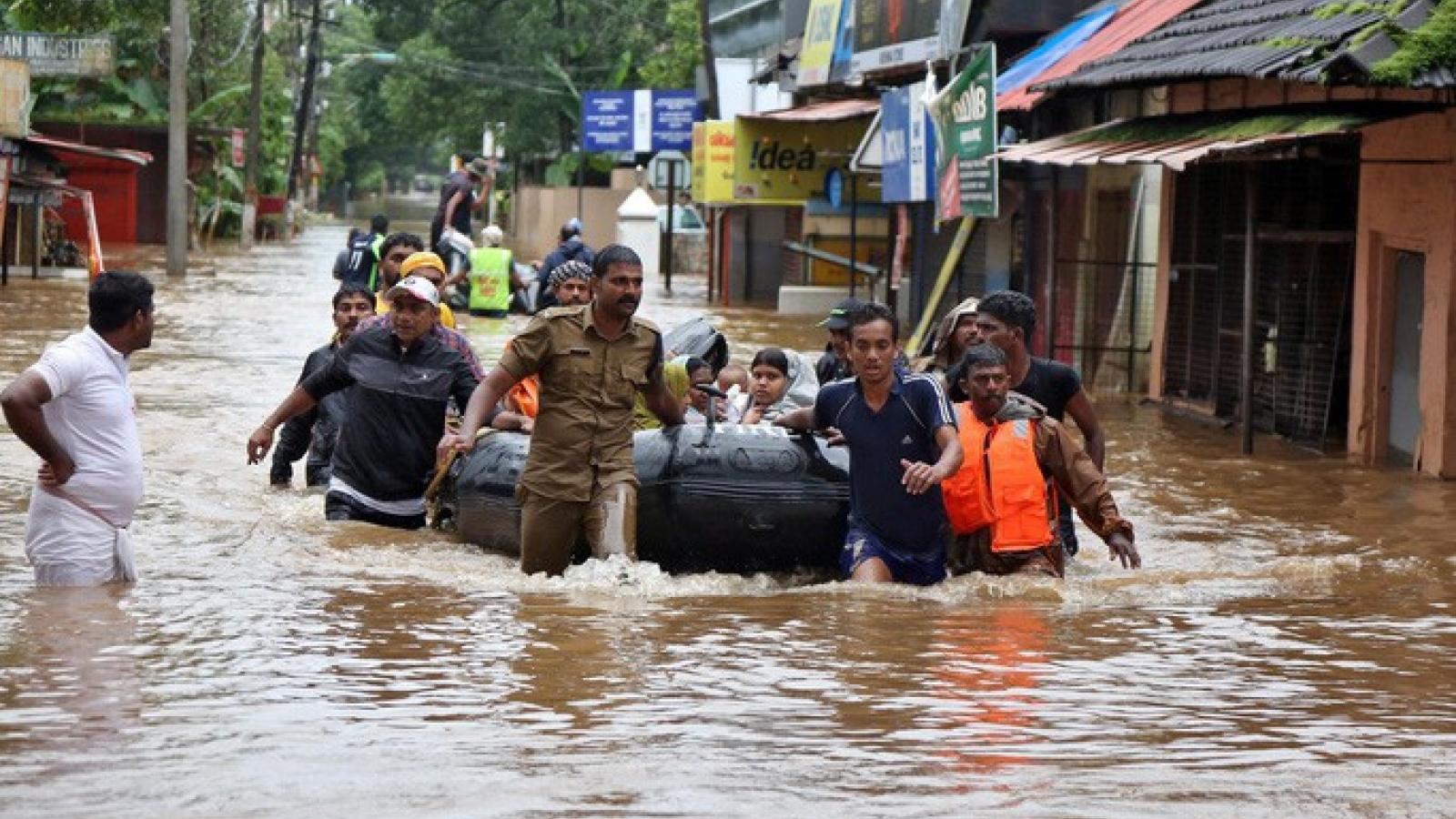 Ít nhất 41 người thiệt mạng do mưa lũ tại Ấn Độ và Nepal