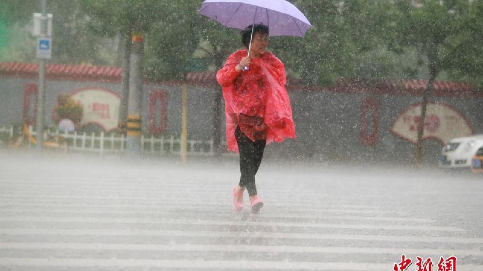 Miền Bắc Trung Quốc mưa lớn, đập Tam Hiệp sắp đón lũ mới