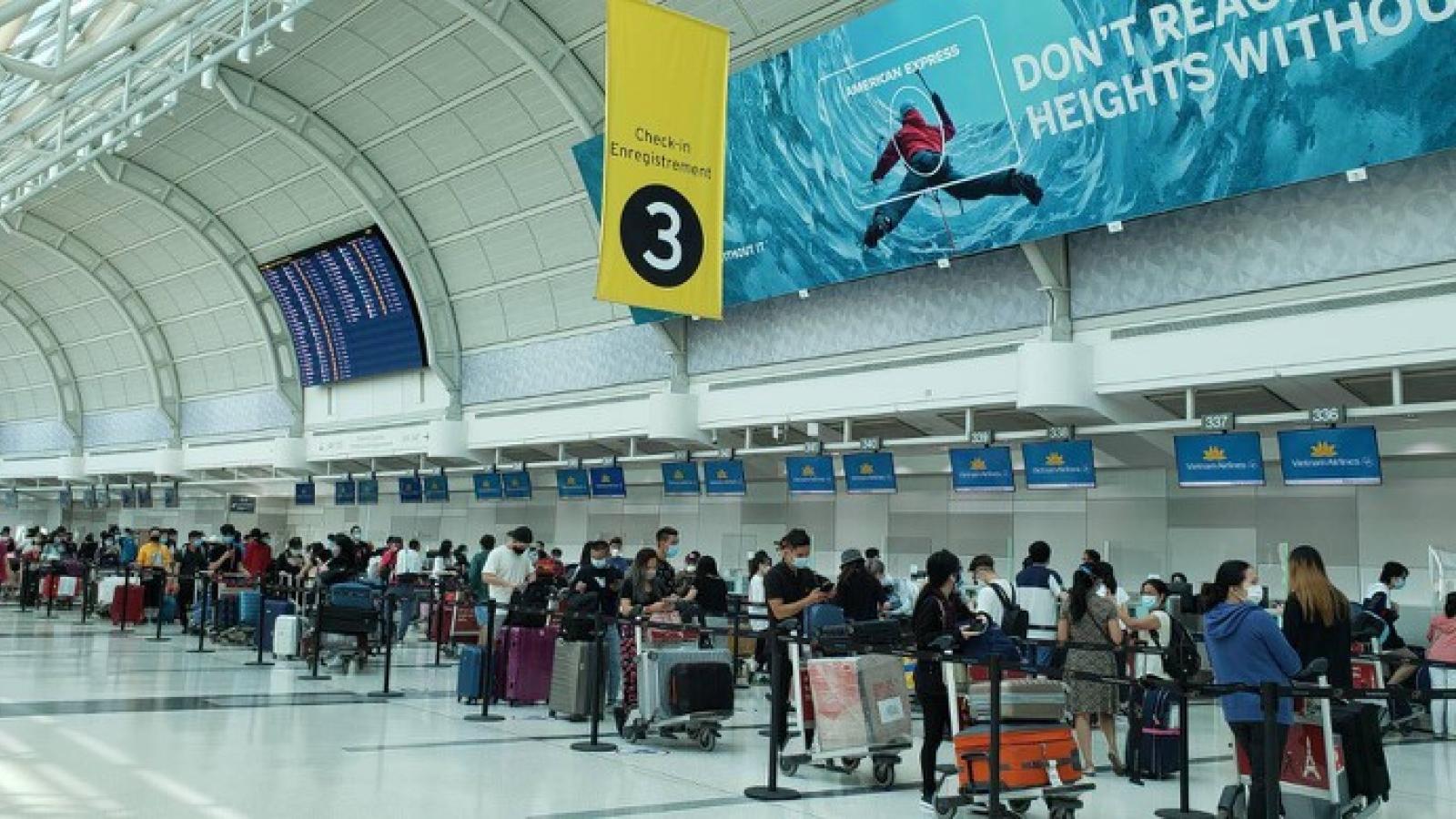 320 công dân từ Canada về nước tránh dịch Covid-19 an toàn