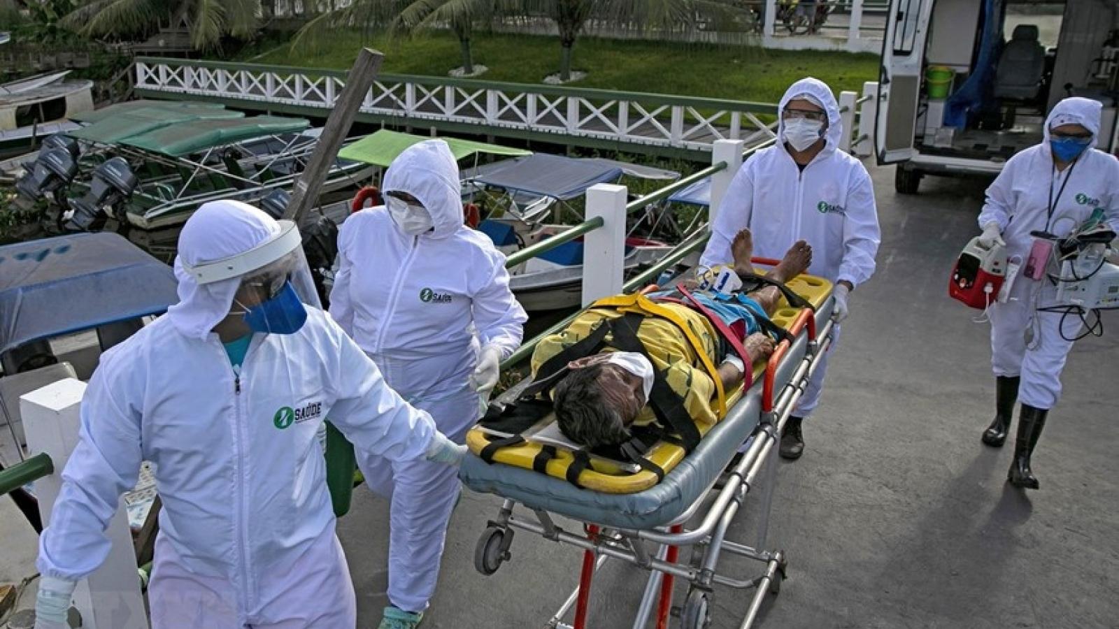 Cập nhật Covid-19: Hơn 24,6 triệu ca mắc, 834.707 ca tử vong trên thế giới