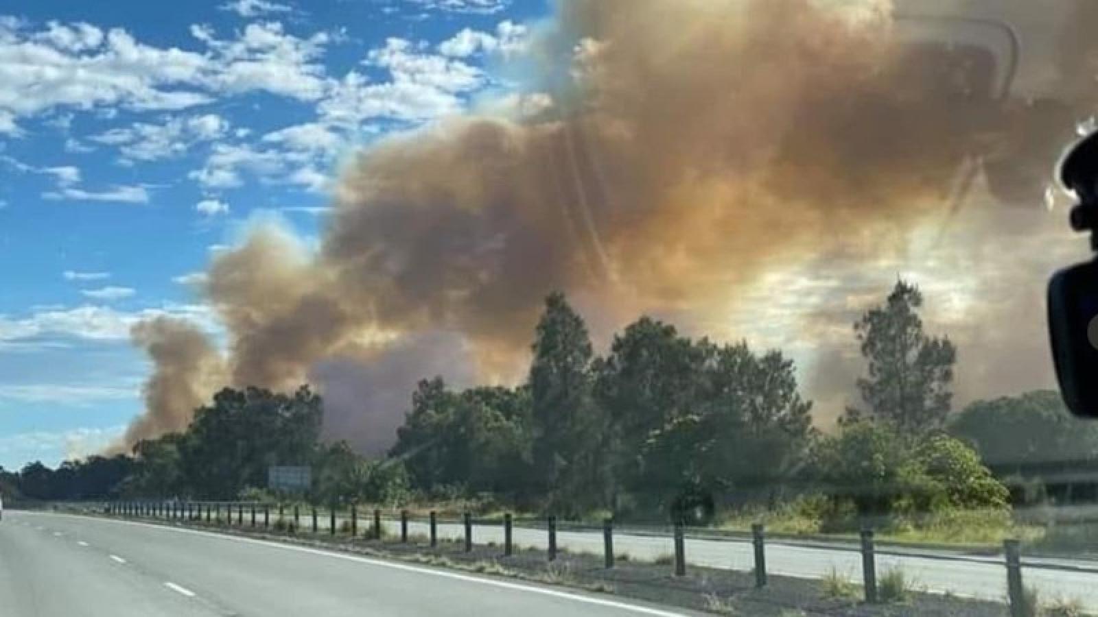 Thảm họa cháy rừng năm 2019 tại Australia có thể lặp lại