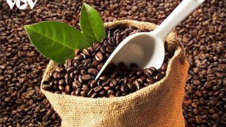 EU increases purchases of Vietnamese coffee