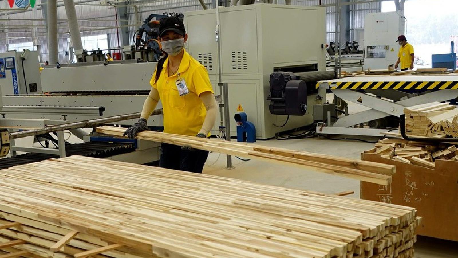 Giấy phép gỗ hợp pháp-hiện thức hóa con đường vào thị trường EU